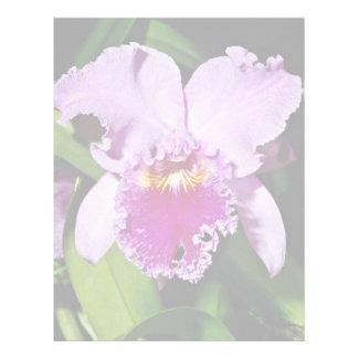 Orchid, cattleya trianae (b c michaelangelo)  flow personalized letterhead