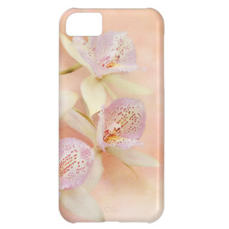 Orchid - Caulocattleya - The twinkle in my eye Cover For iPhone 5C