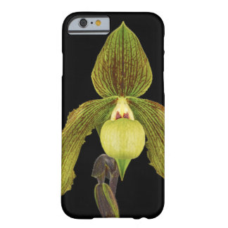 Orchid Cell Phone Case iPhone 6 case Barely There iPhone 6 Case