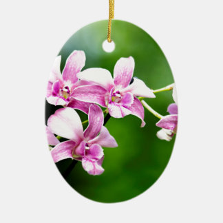 orchid ceramic oval ornament