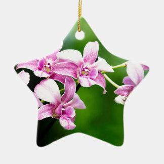 orchid ceramic star ornament