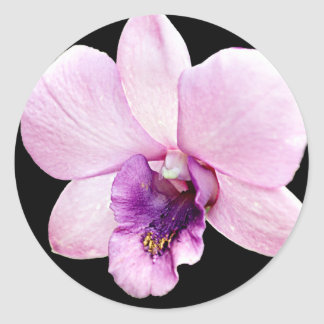 Orchid Classic Round Sticker
