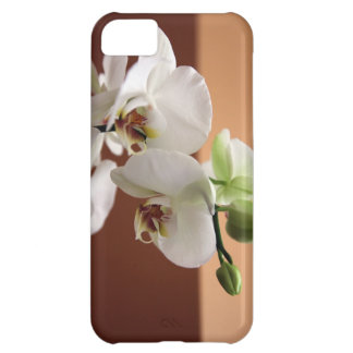 Orchid Cover For iPhone 5C