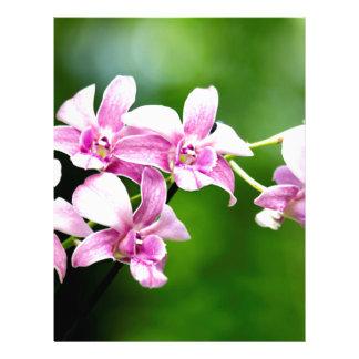 orchid custom letterhead