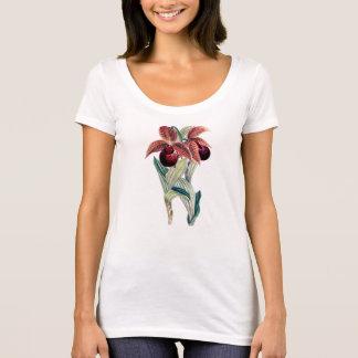 ORCHID (Cypripedium Tibeticum) Scoop Neck T-Shirt