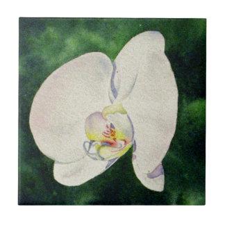 orchid dance 1 tile