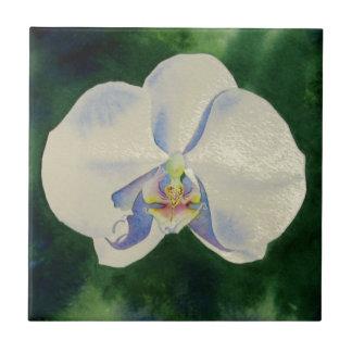 orchid dance 2 tiles