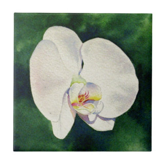 orchid dance 3 ceramic tiles