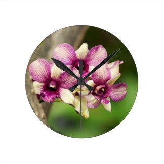 Orchid Delight Clocks