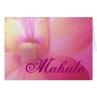 Orchid Dream Card
