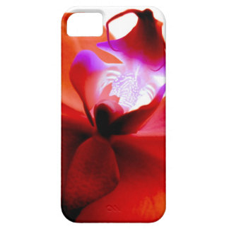 Orchid Dreaming iPhone5 Case