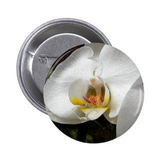 Orchid Flower 2 Inch Round Button