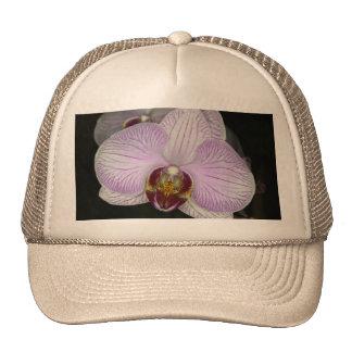 Orchid Flower Mesh Hats