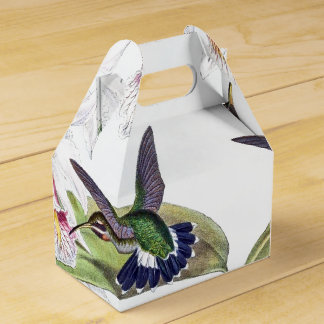 Orchid Flower Hummingbird Birds Wildlife Favor Box