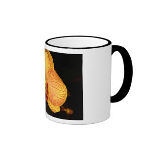 Orchid Flower Coffee Mugs
