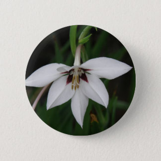 Orchid Flower Round Pin