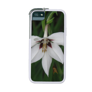 Orchid Flowers iPhone 5 Cover