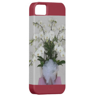 Orchid Flowers iPhone 5 Case