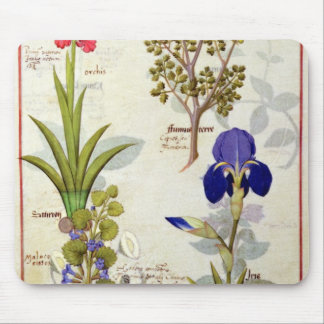 Orchid & Fumitory or Bleeding Heart Hedera & Iris Mouse Pad