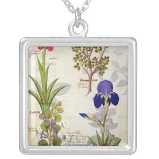 Orchid & Fumitory or Bleeding Heart Hedera & Iris Silver Plated Necklace