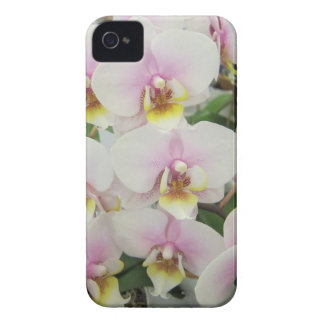 Orchid I phone case Case-Mate iPhone 4 Case