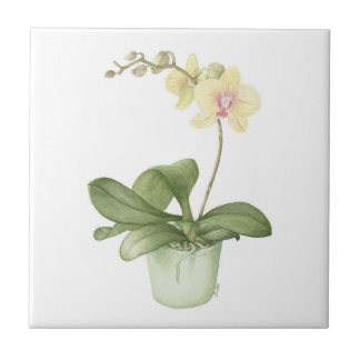 Orchid in a Green Pot Botanical Ceramic Tile