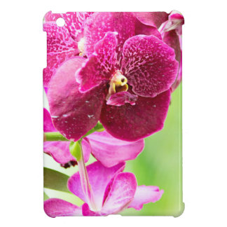 orchid iPad mini cases