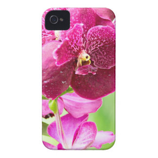 orchid iPhone 4 Case-Mate case