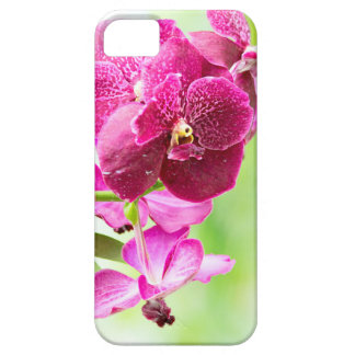 orchid iPhone 5 cases