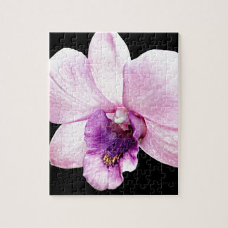 Orchid Jigsaw Puzzle