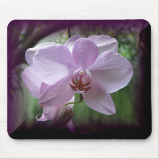 Orchid Mouse Pad