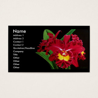 Orchid Oil on Canvas Business Cards