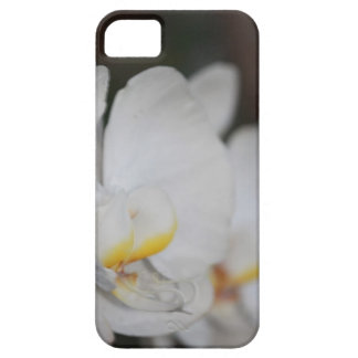 Orchid on the Side iPhone 5 Cover