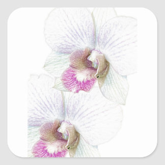 Orchid Party Personalize Destiny Destiny'S Square Sticker