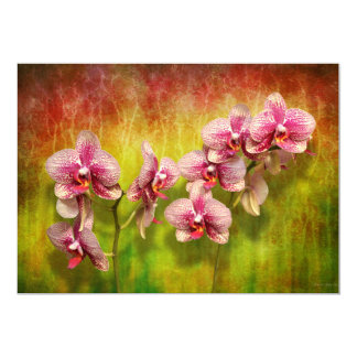 Orchid - Phalaenopsis - Simply a delight Card