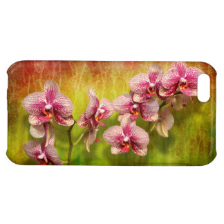 Orchid - Phalaenopsis - Simply a delight Case For iPhone 5C