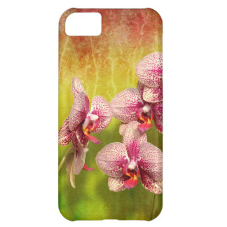 Orchid - Phalaenopsis - Simply a delight Case-Mate iPhone Case