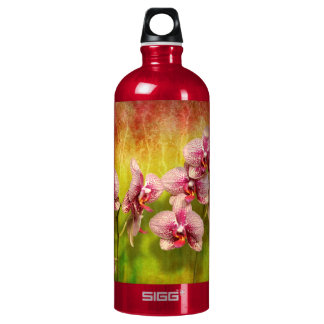 Orchid - Phalaenopsis - Simply a delight Water Bottle