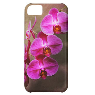 Orchid - Phalaenopsis - The moth orchid Case For iPhone 5C