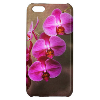 Orchid - Phalaenopsis - The moth orchid iPhone 5C Case