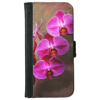 Orchid - Phalaenopsis - The moth orchid iPhone 6 Wallet Case