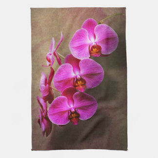 Orchid - Phalaenopsis - The moth orchid Kitchen Towel