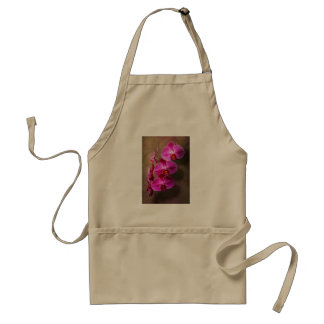 Orchid - Phalaenopsis - The moth orchid Standard Apron