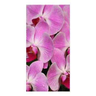 Orchid Photocard Photo Card