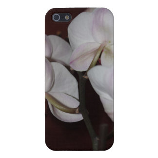 Orchid, photograph iPhone 5/5S cases