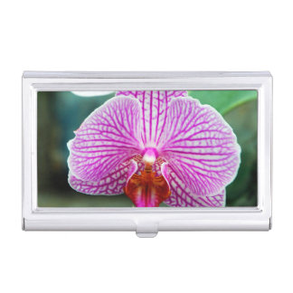 Orchid Pink Asian Flower Business Card Case