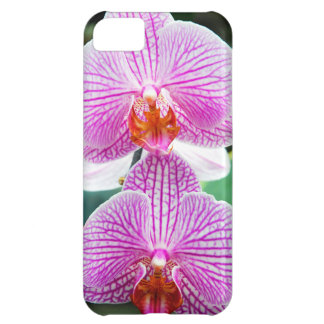 Orchid Pink Asian Flower Case For iPhone 5C