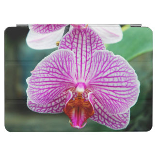 Orchid Pink Asian Flower iPad Air Cover