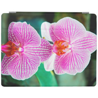 Orchid Pink Asian Flower iPad Cover