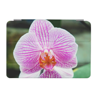 Orchid Pink Asian Flower iPad Mini Cover